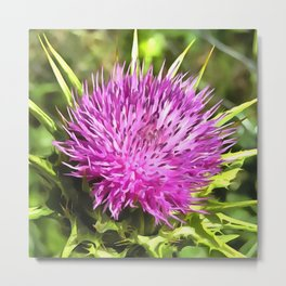 Purple Thistle Wildflower Metal Print