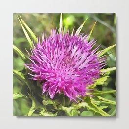Purple Thistle Wildflower Metal Print