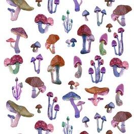 Framed Art Print - mushrooms everywhere - franciscomffonseca