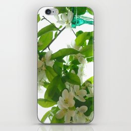 Crabapple Blossoms and Green Glass ~ flowers iPhone Skin