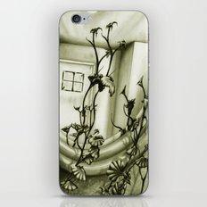 The Mirror iPhone & iPod Skin