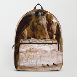 Stampede Backpack