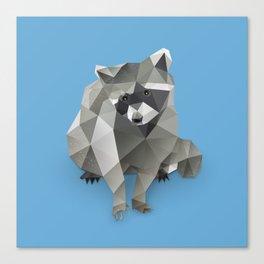 Racoon. Canvas Print