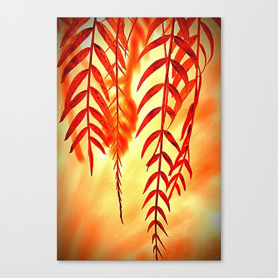 Nature willow Canvas Print