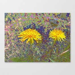 Not your every day flower Canvas Print