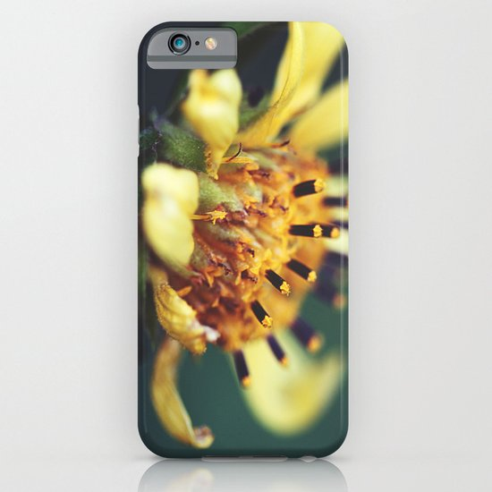 Sunburst iPhone & iPod Case