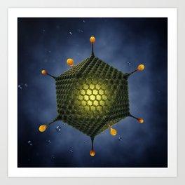Adenovirus Art Print