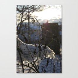 Pearl Hour Canvas Print