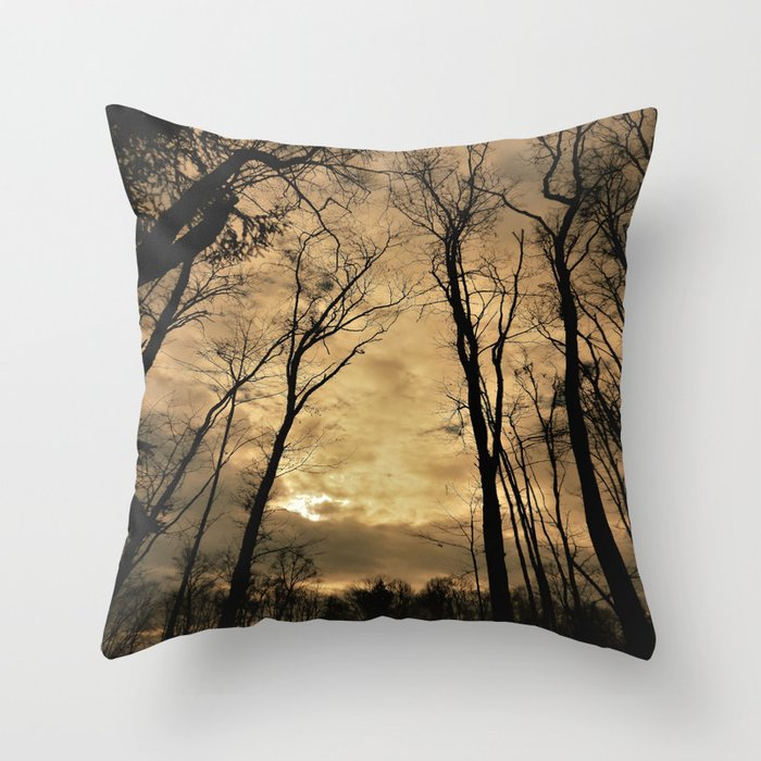 snow clouds above the wood Throw Pillow