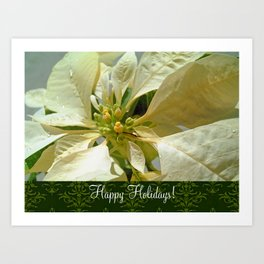 Pale Yellow Poinsettia 1 Happy Holidays S6F1 Art Print