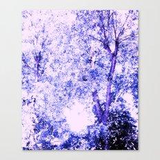 Blue trees Canvas Print