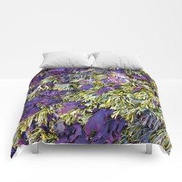 Bolinas Tide Pool Comforters
