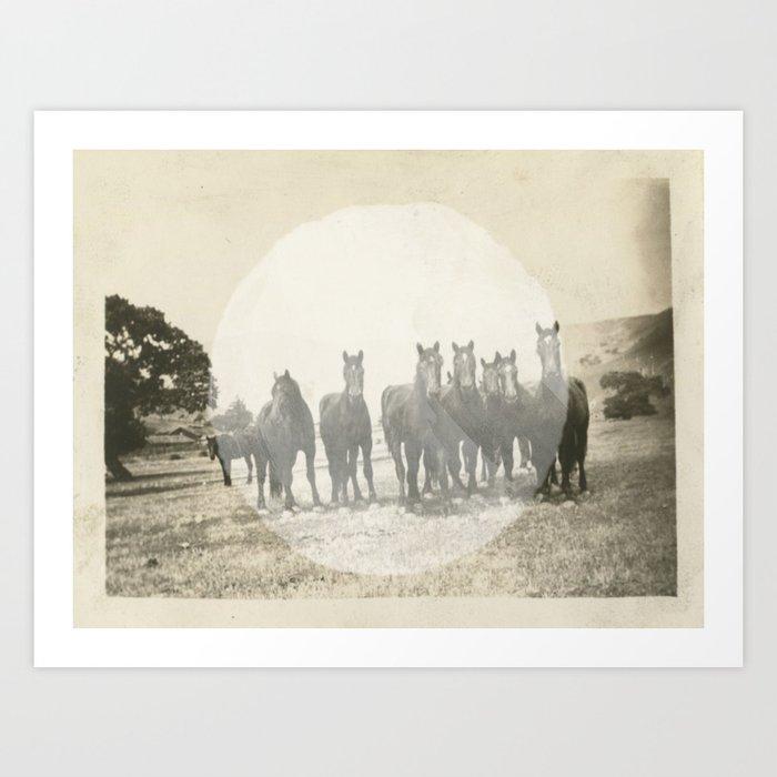 Band of Horses - White Art Print