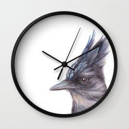 Steller's Jay - CYANOCITTA STELLERI By Magda Opoka Wall Clock