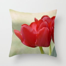 Wonderfully Red Throw Pillow