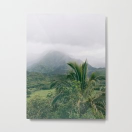 Hanalei Valley, Kauai Hawaii, Tropical Nature, Landscape Photography Metal Print