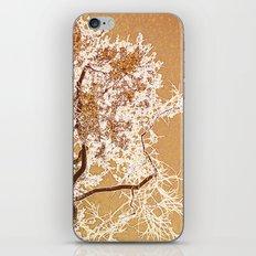 Golden Sky iPhone & iPod Skin