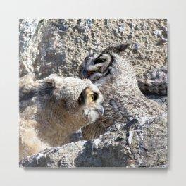 Watercolor Bird, Great Horned Owl 03, Estes Park, Colorado, The Owlet Metal Print