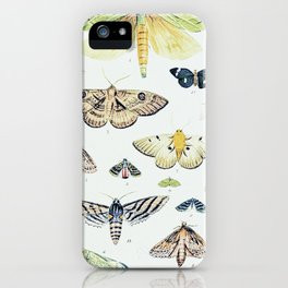 The Pretty Insects: Antique Butterfly Monarch Print iPhone Case