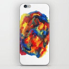 Colour Dialogue 021 iPhone Skin
