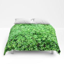 Textures in Green Comforters