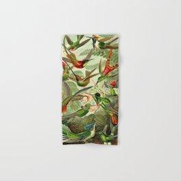 Ernst Haeckel Trochilidae 1904 Poster Hand & Bath Towel