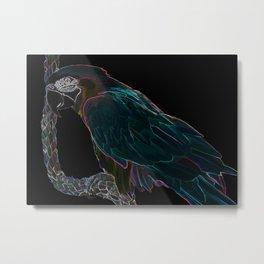 Midnight Macaw Metal Print