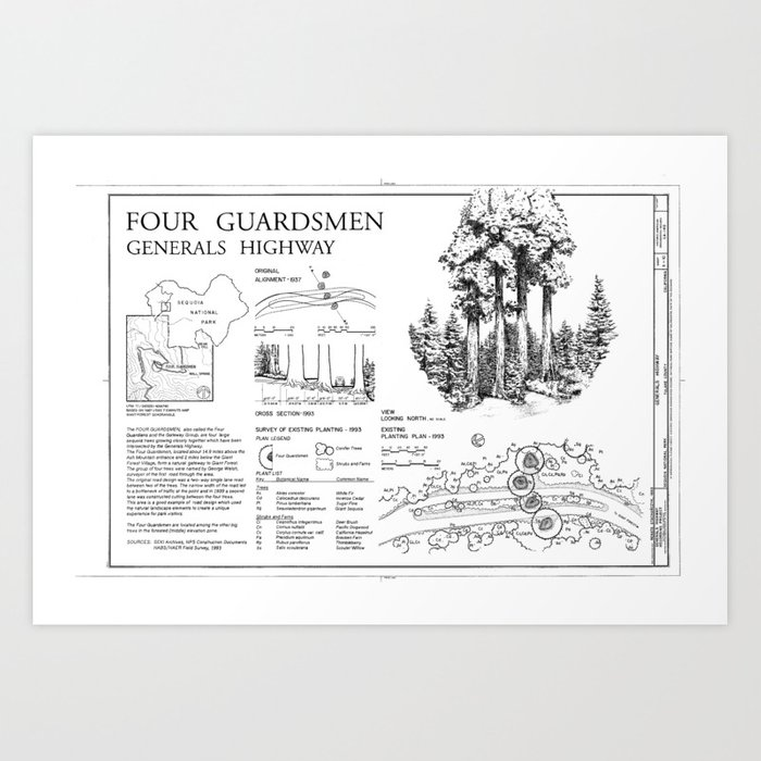 Four Guardsman General Highway - Generals Highway, Three Rivers, Tulare  County, CA Art Print by amhq