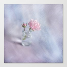 Square with a small rose Canvas Print