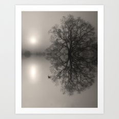 Water Oak Art Print