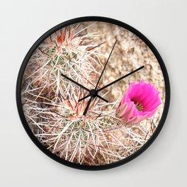 Prickly Pink Wall Clock