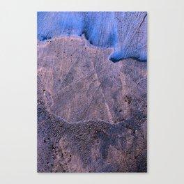 bole Canvas Print