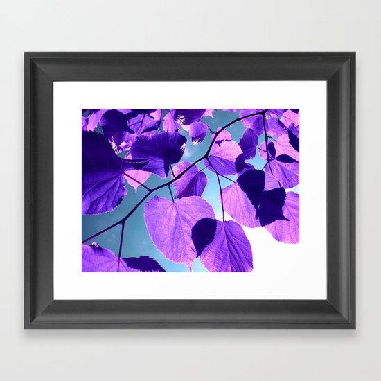 purple lime leaves I Framed Art Print