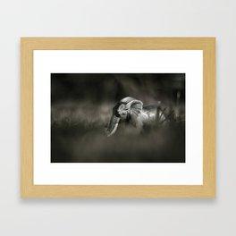 Plastic elephant toy Framed Art Print