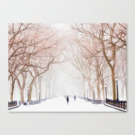The Tree Path in Snow (Color) Canvas Print