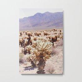 Chollo Cactus Garden - Joshua Tree Metal Print