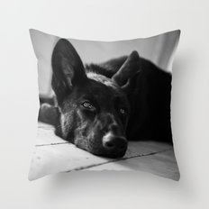 Dog German Shepherd  Throw Pillow