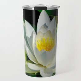 White Water Lily and Bud in Pond Travel Mug