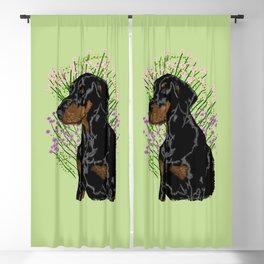 Dobermann pincer calm - Green Blackout Curtain