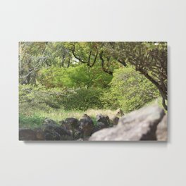 Nature in Japan - Nagasaki Metal Print