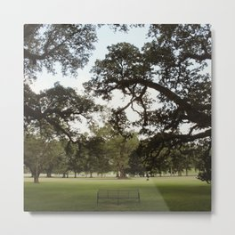 Oak Alley Plantation, Louisiana  Metal Print