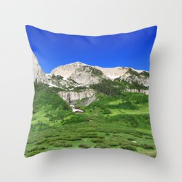 What Waterfall Throw Pillow