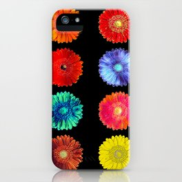 Variations of a gerbera iPhone Case