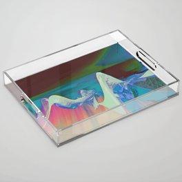NTDDYDT Acrylic Tray
