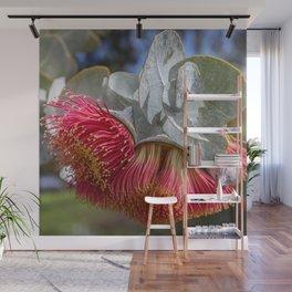 Australian beauty Wall Mural