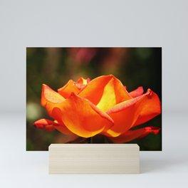 Red Rose Glowing Mini Art Print