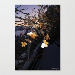 Frozen Flowers Canvas Print