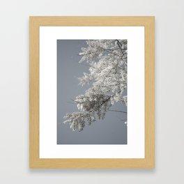 fluffy tree by the sea Framed Art Print