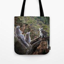 Leemer Lookout Tote Bag