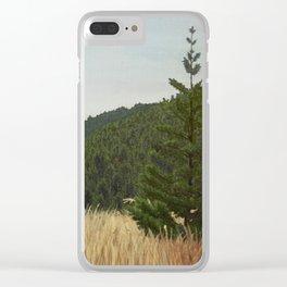 Mt. Tamalpais Clear iPhone Case